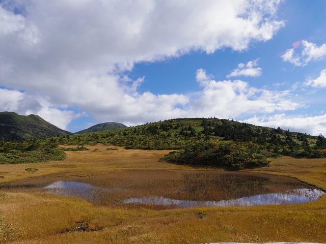 湿原展望台から臨む田茂萢